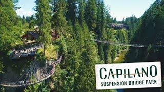 Explore Capilano Suspension Bridge Park, Vancouver