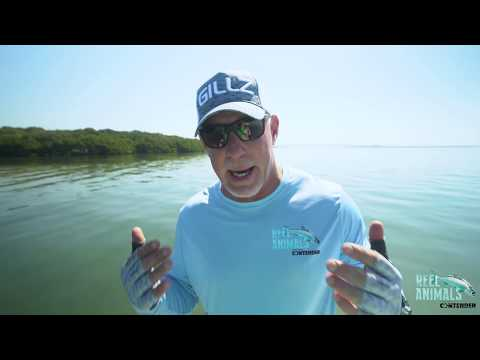 check-out-maui-jim-sunglasses-today!---reel-animals-fishing-show