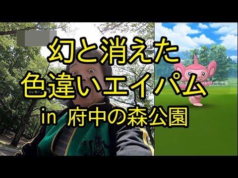 【ポケモンGO】幻と消えた色違いエイパム in 府中の森公園