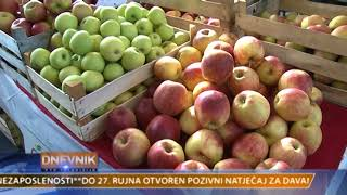 VTV Dnevnik 11. listopada 2017.