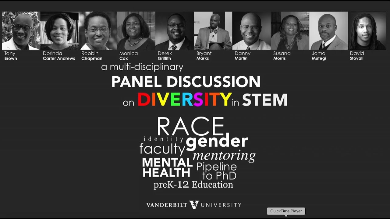 Panel Discussion on Diversity in STEM (June 2015)