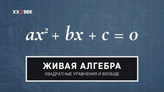 Живая алгебра: квадратные уравнения и вообще математика