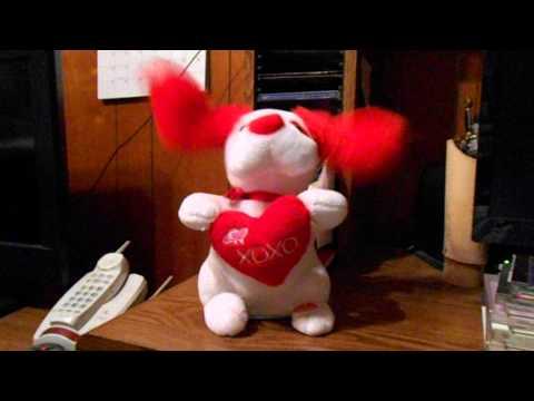 singing-valentine-dog