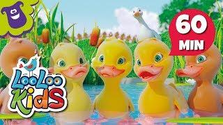 Five Little Ducks - Great Songs | LooLoo Kids