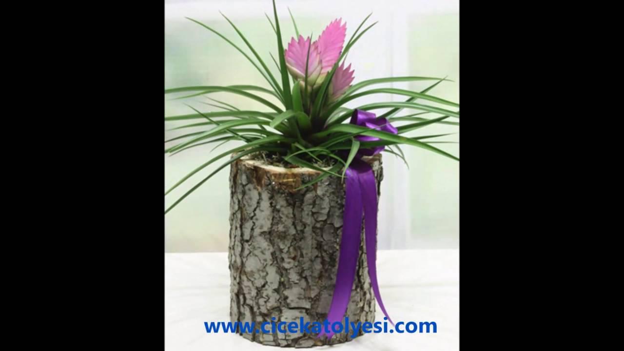 Adıyaman çiçekçi çiçek Evi Adıyaman çiçekçileri Adıyaman çiçek