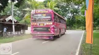 Dam rajina bus in wedding hire