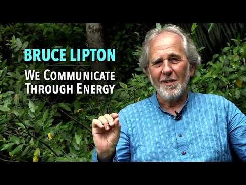 bruce lipton   how your thought shape your current reality