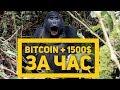 Внезапный рост Bitcoin. То, чего мы все так долго ждали? Аналитика криптовалют