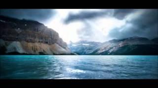 Animal (Jakwob remix)- Penguin Prison
