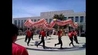 Chinese Culture Day: Dragon Dance