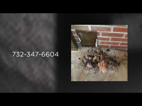 Chimney Cleaning Edison | 732-347-6604 | Atlantic Duct & Dryer Vents Cleaning Edison