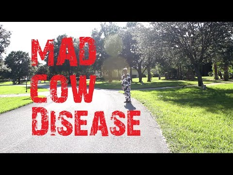 Short Film - Mad Cow Disease