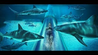 World's Most DANGEROUS Waterslides EVER Created 2019 #mostdangerous #danger #waterslides