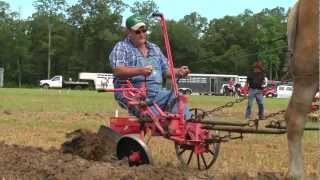 North Carolina Work Horse and Mule Association State Championship Plowing Contest 2012