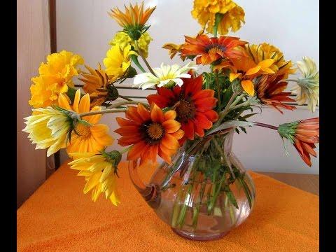#1273. Натюрморты - самые красивые цветы
