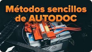 Cómo cambiar Bombilla delantera VW TOURAN (1T3) 1.4 TSI - consejos de sustitución