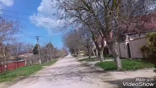 Жизнь в Кучугурах. 5.04.2018. Облачно  t+19'C в тени.