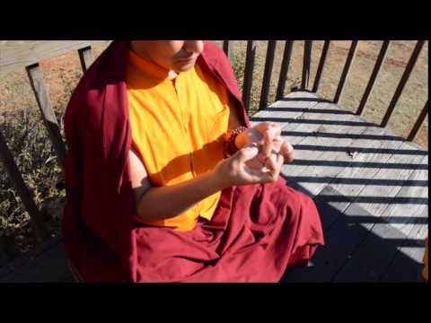 Mandala Offering Lotus Flower Mudra Youtube