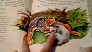 Обзор на путеводитель Коты воители  Секреты племён  Часть 4 2