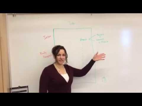 Basic Academic Essay Structure