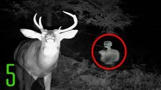 5 Creepiest Unexplained Trail Cam Photos