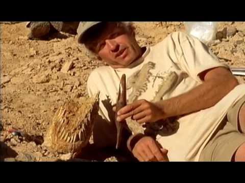 สุดยอดสารคดีจาก Discovery - ไดโนเสาร์ครองพิภพ ตอน ไดโนเสาร์พันธุ์มังกร