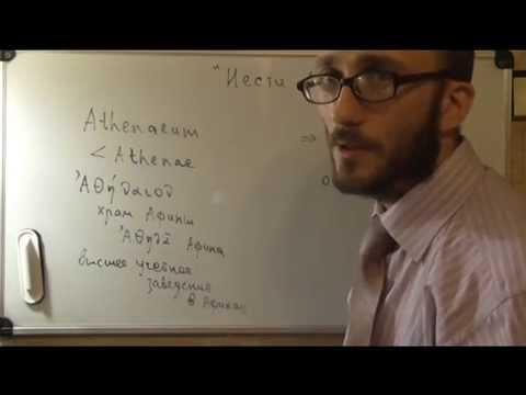 История фразеологизмов  Нести ахинею