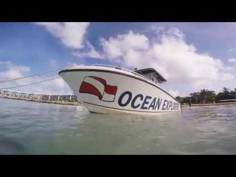 Diving with Ocean Explorers. St Maarten 2015