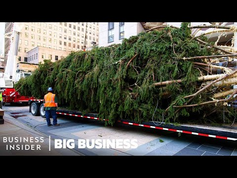 How The 75-Foot Rockefeller Christmas Tree Makes It To NYC | Big Business
