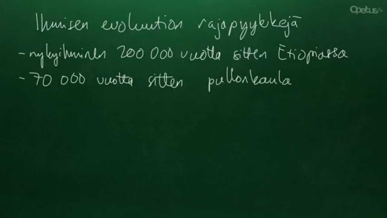 Homo suku puoli yhteys tiedot numero