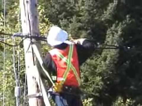 scab video.  Replacement worker tries to put up a drop wire.