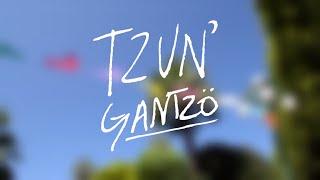 Proyecto Tzun