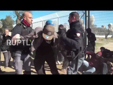 Italy: Dozens detained as pipeline construction site replaces olive grove