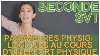 Paramètres physiologiques variant au cours d'un effort - SVT - Seconde - Les Bons Profs thumbnail