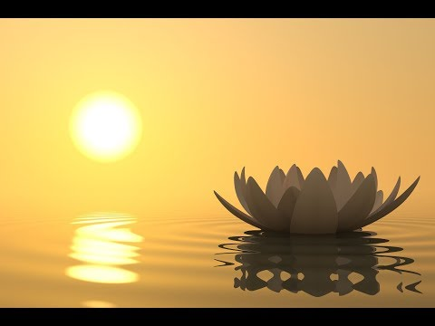 Popular Videos - Music for Deep Meditation