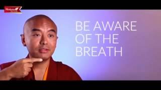 Aprender a meditar fácil! Mingyur Rinpoche Maestro Budista Tibetano
