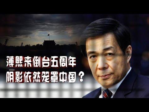 焦点对话:薄熙来倒台五周年,阴影依然笼罩中国?
