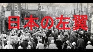 日本の左翼、全学連(西暦1993年)平成5年