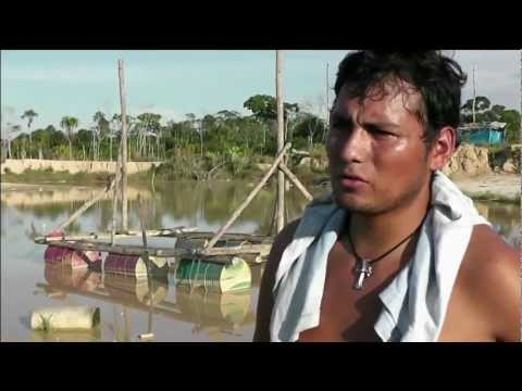 Peru: Illegal Gold Miners Cause Deforestation In The Amazon