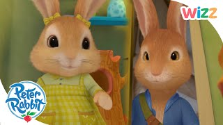 Peter Rabbit - Cottontail's New Dolly | Wizz | Cartoons for Kids