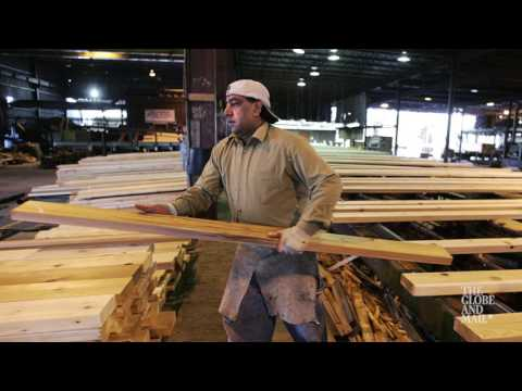 Why the U.S. has a problem with Canada's softwood exports