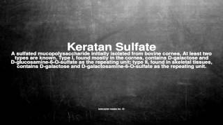 Medical vocabulary: What does Keratan Sulfate mean