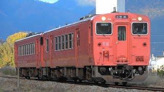 2020/11/13 238D 普通 キハ41系(キハ41 2004)+キハ40系(キハ40 2008)