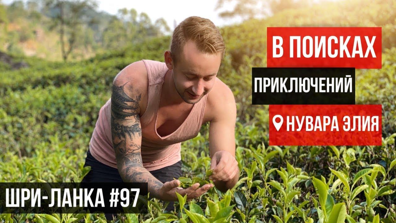 самахан чай шри ланка