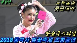 💗버드리💗2018년4월6일 야간 동학사 벚꽃축제  초청 공연
