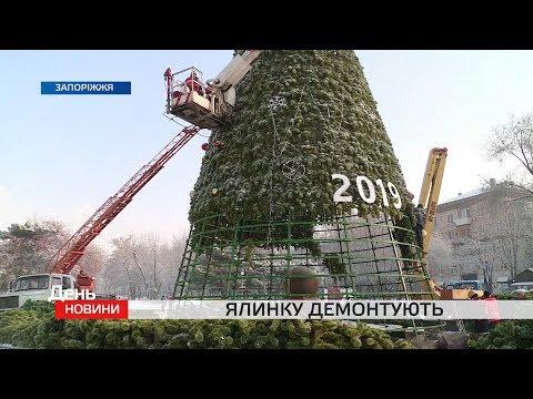 Телеканал TV5: Головну ялинку Запоріжжя — демонтують