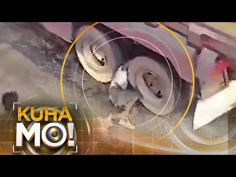 Sinapak, Tumumba, Nagulungan | Kuha Mo!