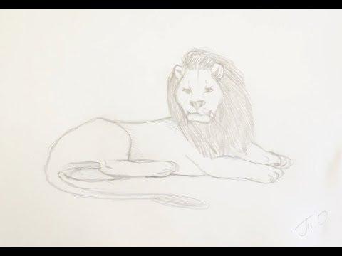 Как нарисовать льва поэтапно простым карандашом начинающие