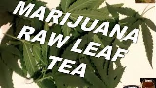 Marijuana Tea Weed Tea Hemp Tea Brewed from Scratch!