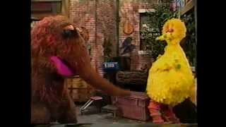 Sesame Street - Big Bird Has The Birdy Pox
